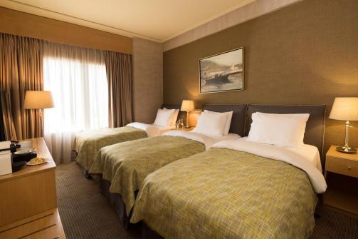 Hotel Astor, Atene (Booking)