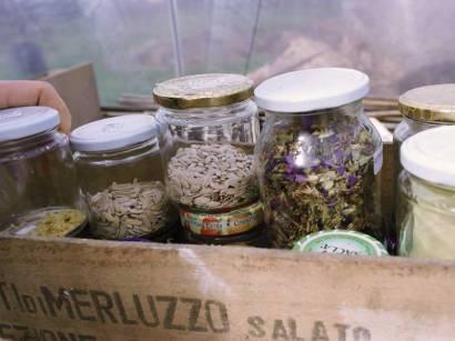 I semi per l'orto