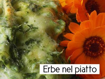 Le lasagne con il litum