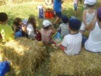 La scuola sul grano