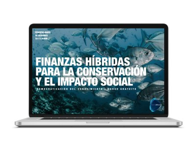 finanzas-híbridas-Fideicomisos-privados-Terraetica-consultoria-en-medicion-de-impacto