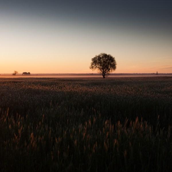 Amanecer en Castilla la Mancha, cerca de La Villa de Don Fadriqu