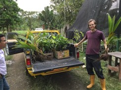 Peter bringing plants from the office to the farm