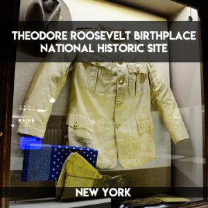 Teddy Roosevelt's Birthplace    A National Historic Site    terragoes.com