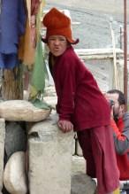 Ladakh 2009, 2 355