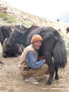 Ladakh 2009, 3 364