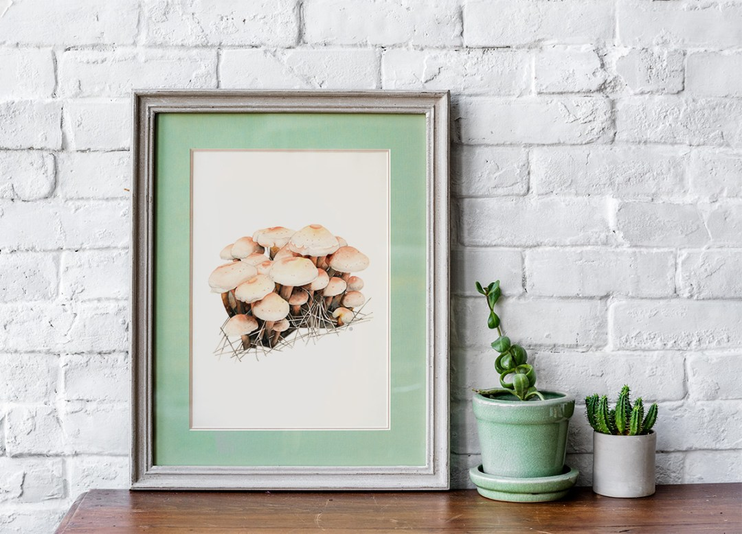 framed watercolor of forest mushrooms by Kristin Maija Peterson