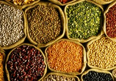 Bags of assorted organic pulses and grains