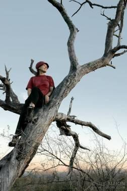 becky_tree
