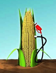 Biocombustibili ILUC