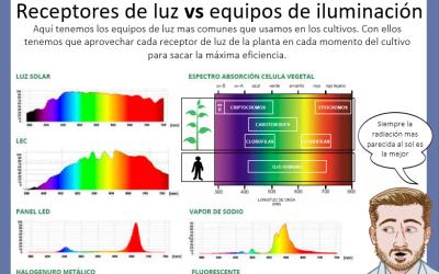 Dr Nabis iluminacion y receptores de luz