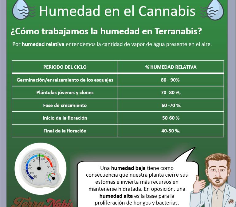 Dr. Nabis humedad en cannabis
