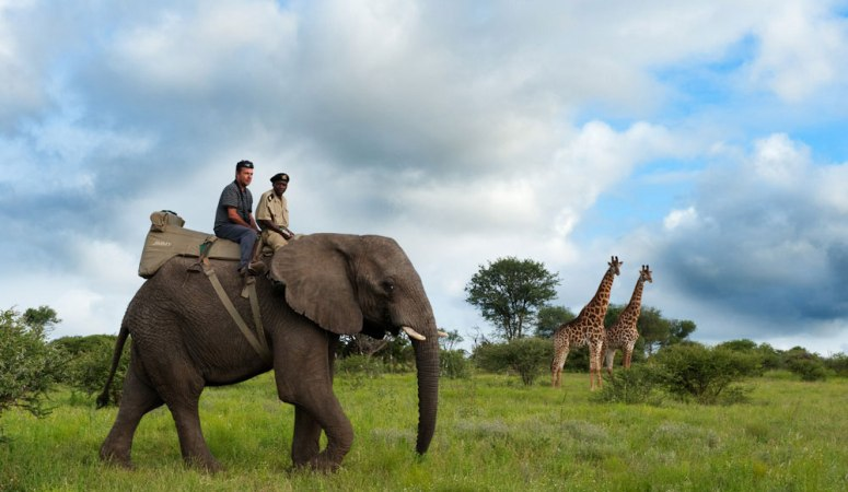 Awesome African Adventure