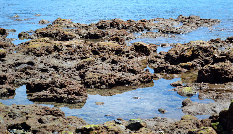 Santa Teresa Beach Tide Pools