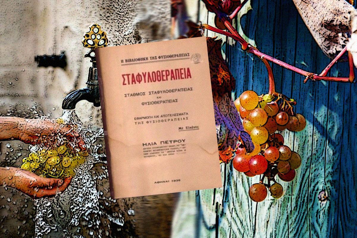 terrapapers.com_stafylotherapeia-ilias petrou 2