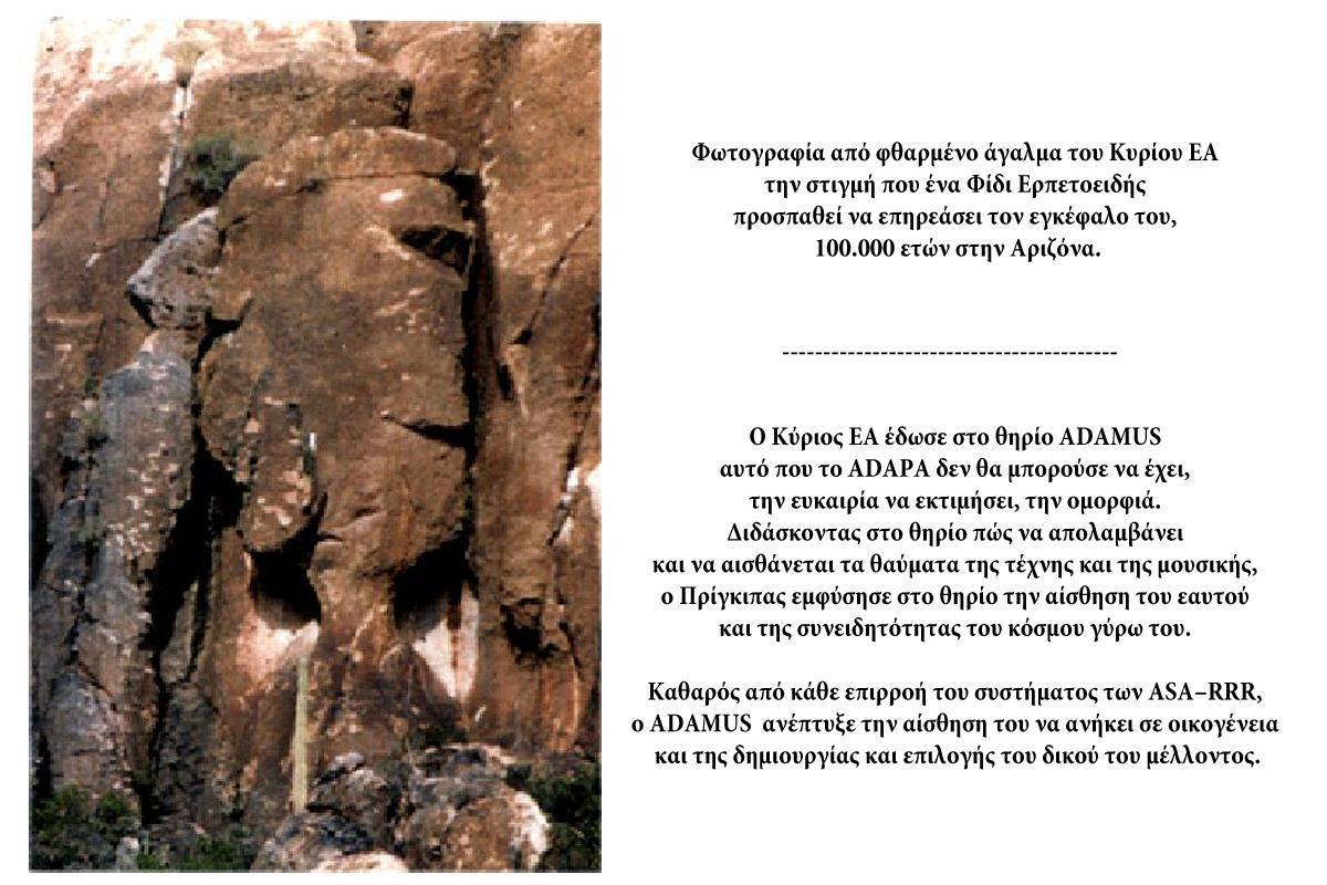 terrapapers.com_kines seiriou 1
