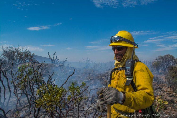 Además de prevenir y controlar incendios, los guardaparques se encargan de monitorear, estudiar y restaurar los diferentes ecosistemas.