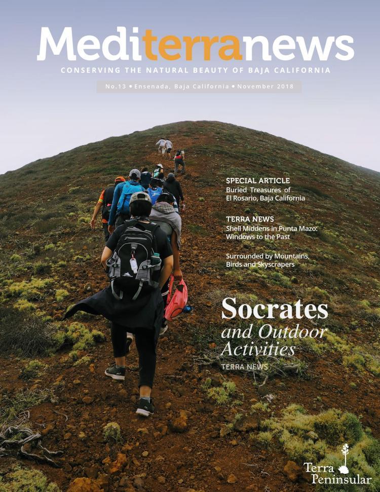 Vol. 3 Issue 13 (November 2018)