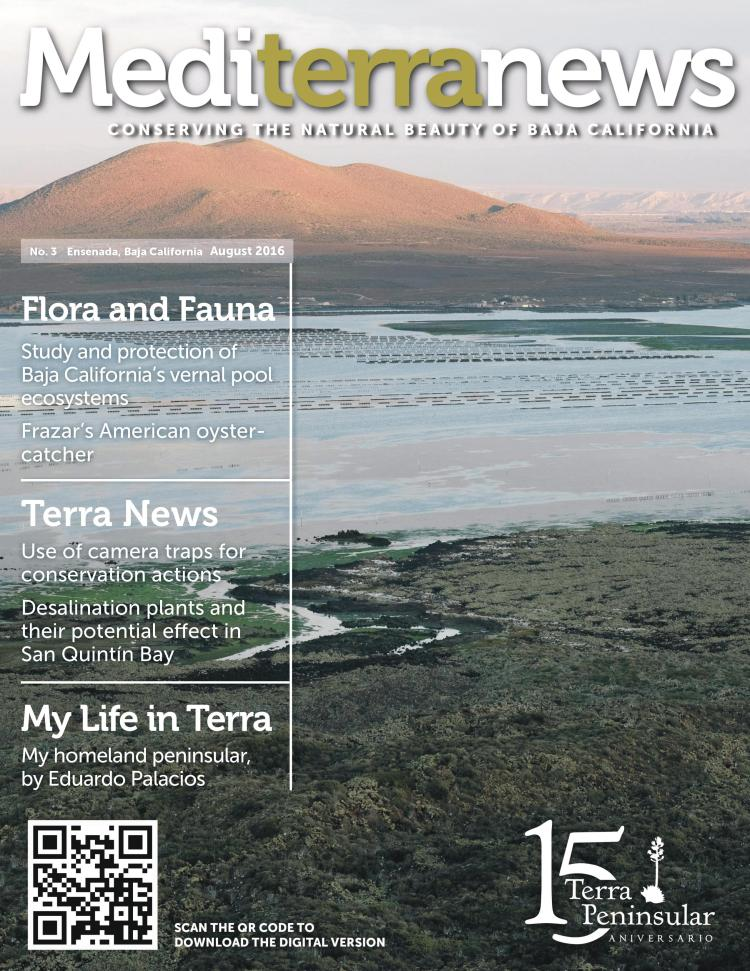 Vol. 1 Issue 3 (August 2016)
