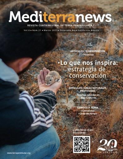 Revista Mediterranews Vol. 6 Núm. 21   Marzo 2021