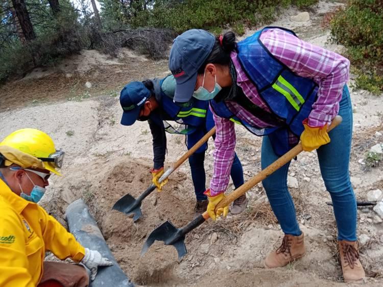 Voluntariado Driscoll's en San Pedro Mártir
