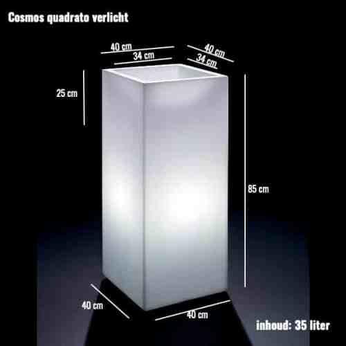Cosmos quadrato verlicht