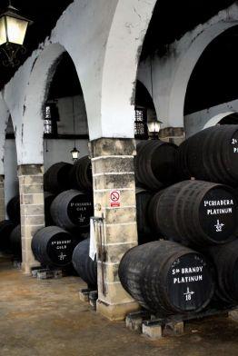 Bodegas Tradicion - Jerez Abril 2012 (13)