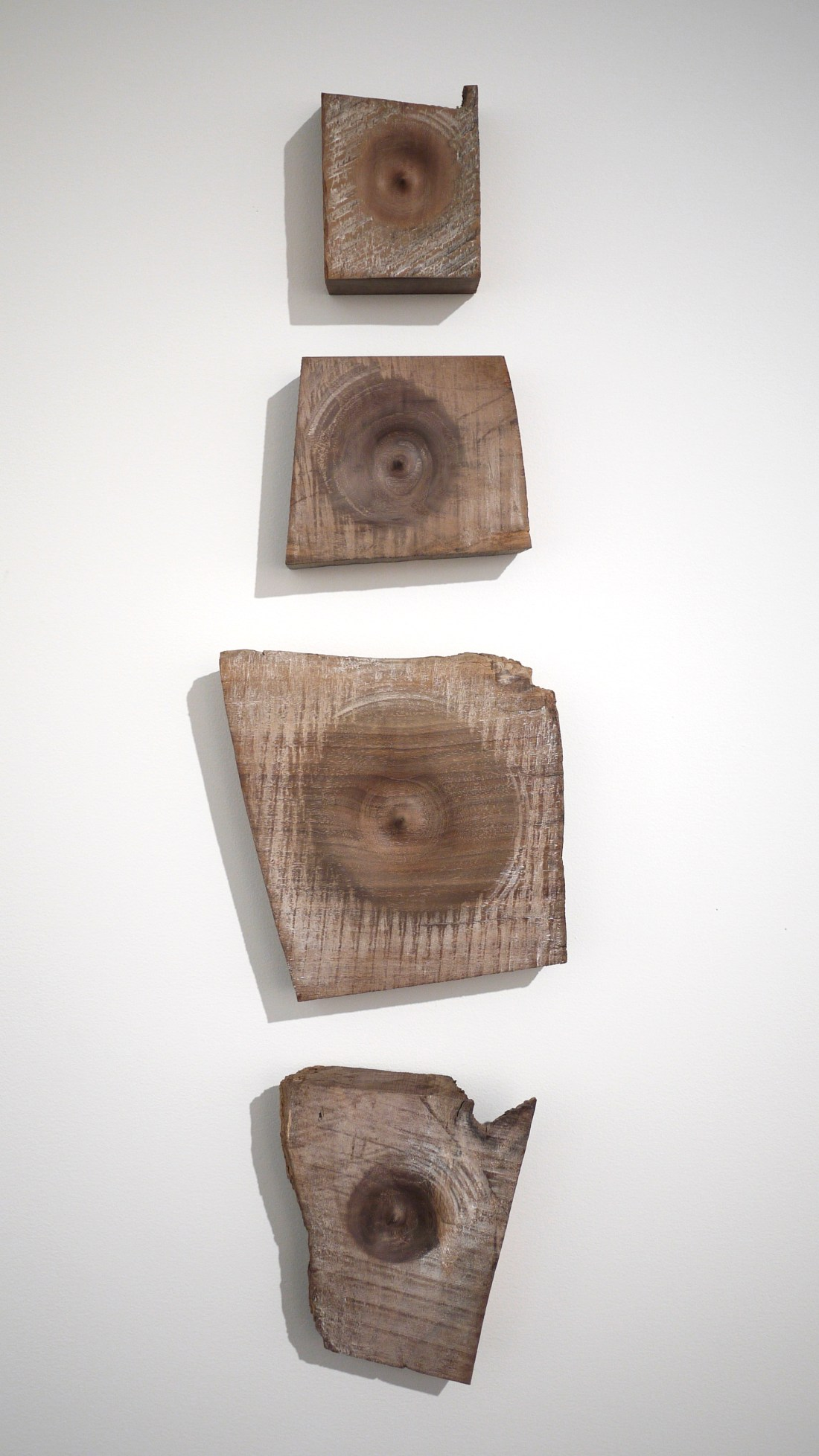 4 section wall art conceptual woodworking made of walnut and turned on lather