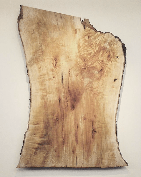 large silver maple slab with cream colored background