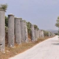 Sebaste ou Samarie, la capitale de l'ancien royaume d'Israël