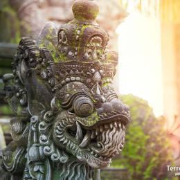 Caminar por las calles y visitar los palacios de la antigua capital de java, Jogjkarta.