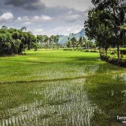Trekking en Sulawesi
