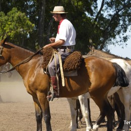 Pasear por la Pampa y descubrir la cultura de los Gauchos