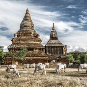 Viajes_Myanmar_31