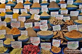 viajes-iran-yazd-06