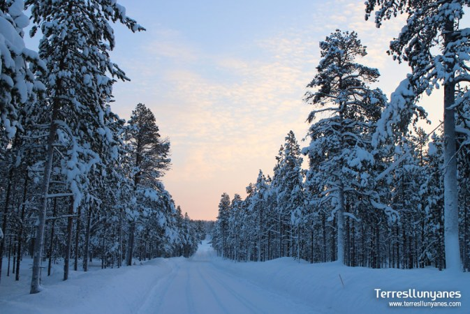 Viatges Suècia, Lapònia Terres Llunyanes