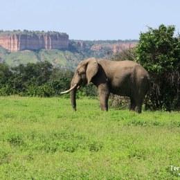 Gonarezou National Park, el secreto mejor guardado