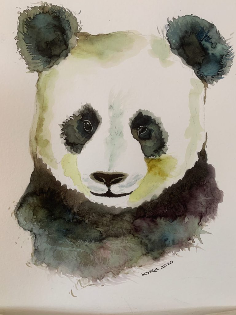 watercolor of panda bear