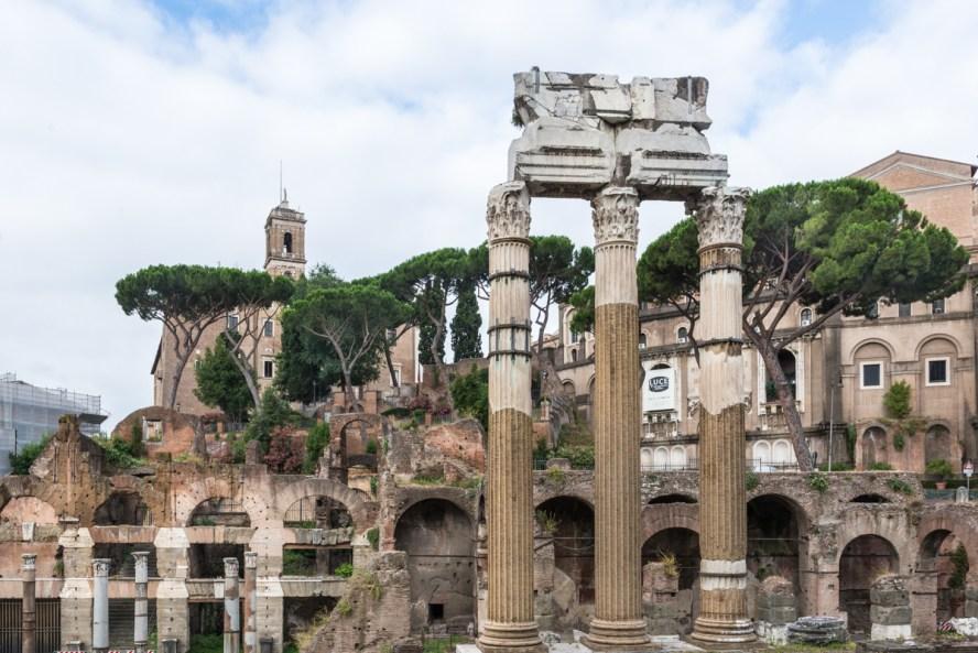 The Forum of Caesar - Temple of Venus Genetrix_DSC4351