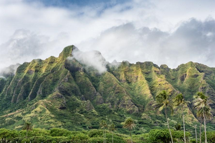 1East Oahu_6577