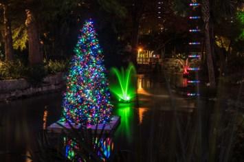 Zoo Lights_7582