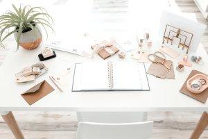 wedding business coach online courses