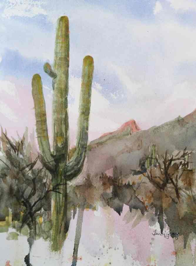 """""""Sabino Saguaro"""" was home to some woodpeckers--there were many holes along its trunk."""