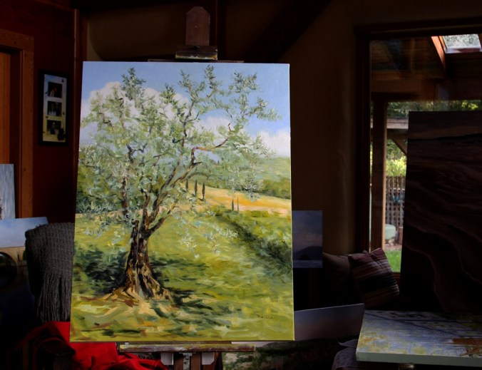 The Olive Tree in progress 6 40 x 30 inch oil on canvas by Terrill Welch 2014_10_03 006