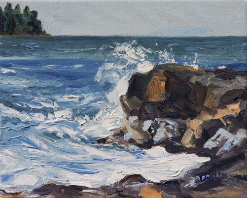 End of Storm Georgina Point Mayne Island 8 x 10 oil on canvas by Terrill Welch 2013_06_25 017