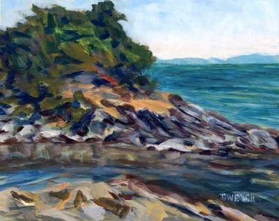 Winter Cove at Canoe Pass 8 x 10 inch acrylic plein air sketch on gessobord by Terrill Welch 2015_06_26 497