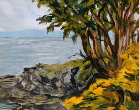 Scotch Broom and Arbutus Trees set in grey quick study 8 x 10 inch acrylic plein air sketch on gessobord by Terrill Welch 2015_05_11 016