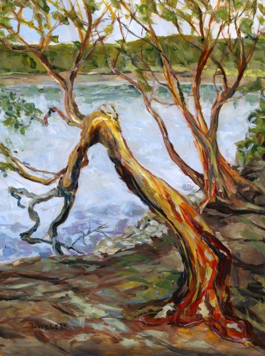 arbutus-outlook-mayne-island-bc-16-x-12-inch-acrylic-sketch-on-gessobord-by-terrill-welch-img_9087