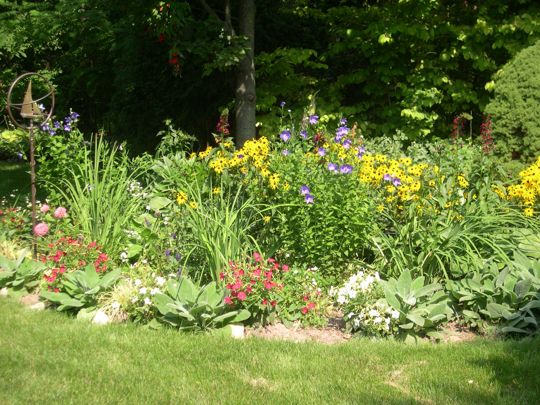 my moms pretty flower garden