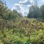 Хотите купить земельный участок в деревне Зинаевка (Наро-Фоминский район)? Звоните по телефону 8 (800) 444-64-58 | Агентство недвижимости Территория. Фото 3
